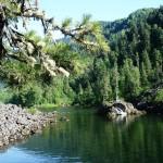Телецкое озеро - жемчужина Алтая, одно из красивейших озер России и мира.