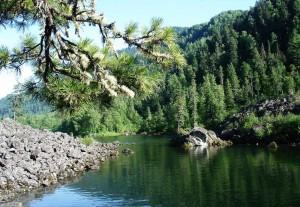 Телецкое озеро - фото