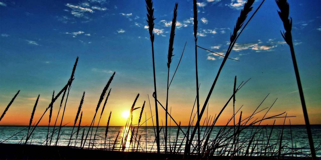 Озеро Ханка - фото