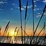 Рассвет на озере Ханка - одном из самых известных озер Северо-восточной Азии