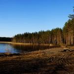 Сямозеро - одно из знаменитых карельских озер прозрачной коричневой водой