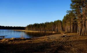 Сямозеро - одно из знаменитых карельских озер с прозрачной коричневой водой