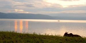 Озеро Альберт на рассвете