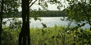 На берегу Большого Святого озера в Нижегородской области