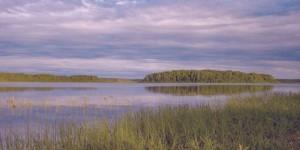 Шимозеро